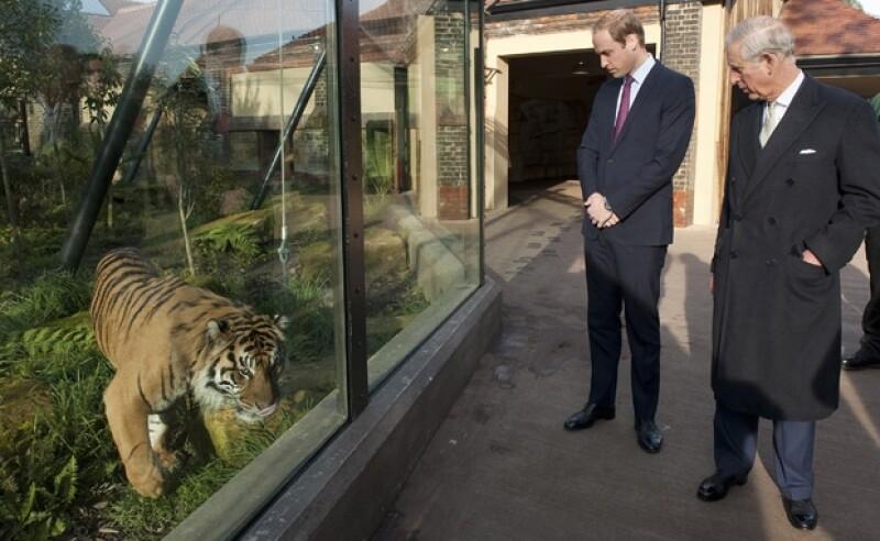 Los príncipes Carlos y Guillermo han enfocado su actividad en la defensa de la caza ilegal de la fauna salvaje.