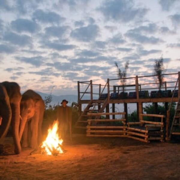 Tailandia triangulo dorado paseo con elefantes