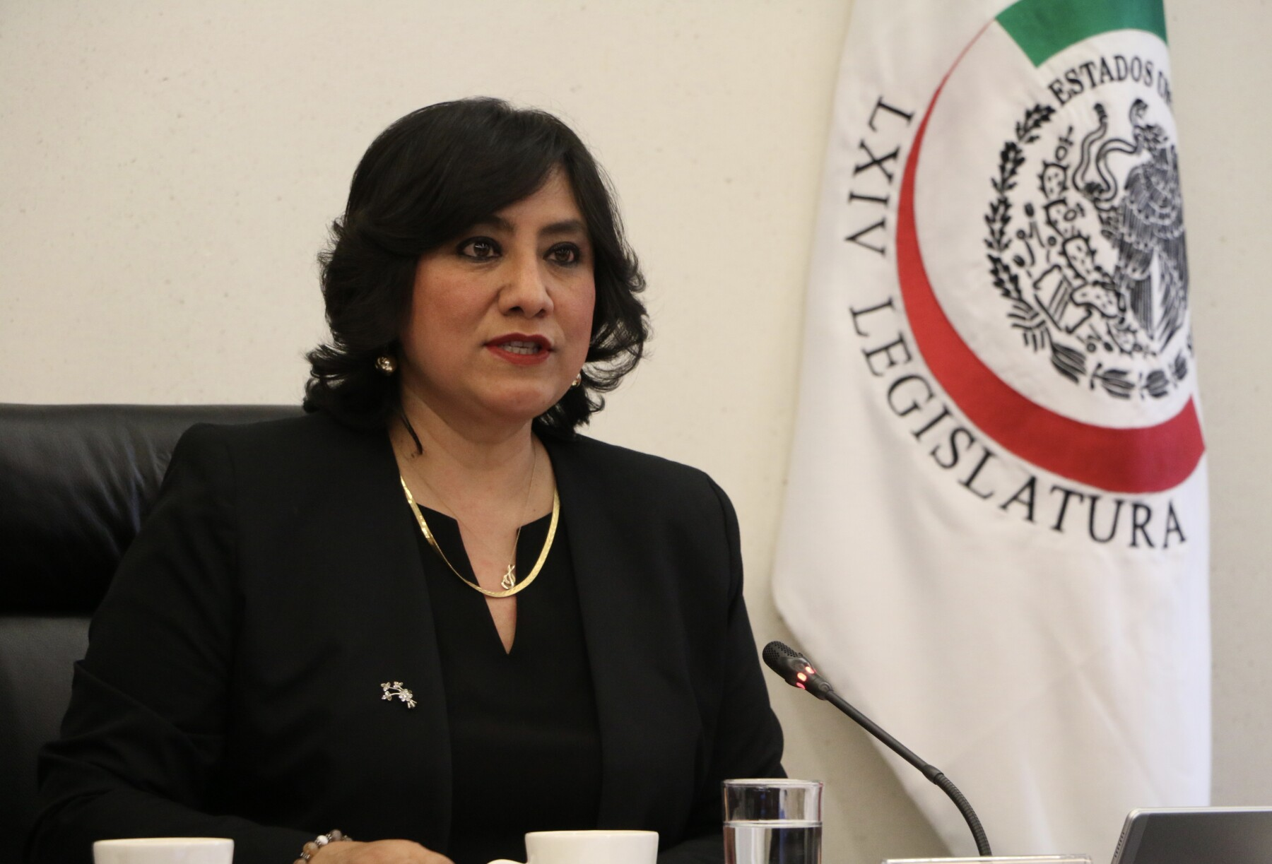 Irma Eréndira Sandoval.jpg
