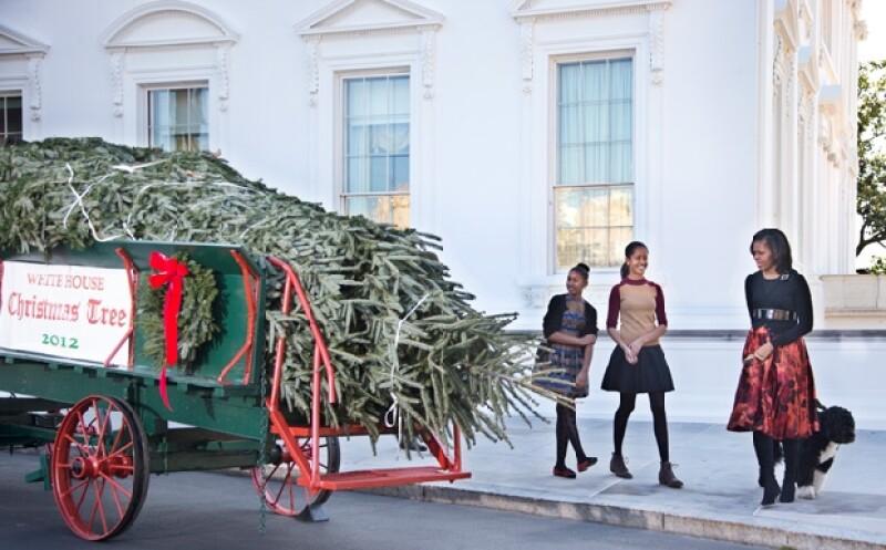 """El abeto de seis metros llegó hasta la Casa Blanca en un carruaje tirado por caballos  mientras la Banda de la Marina interpretaba el clásico villancico """"Oh, Árbol de Navidad""""."""