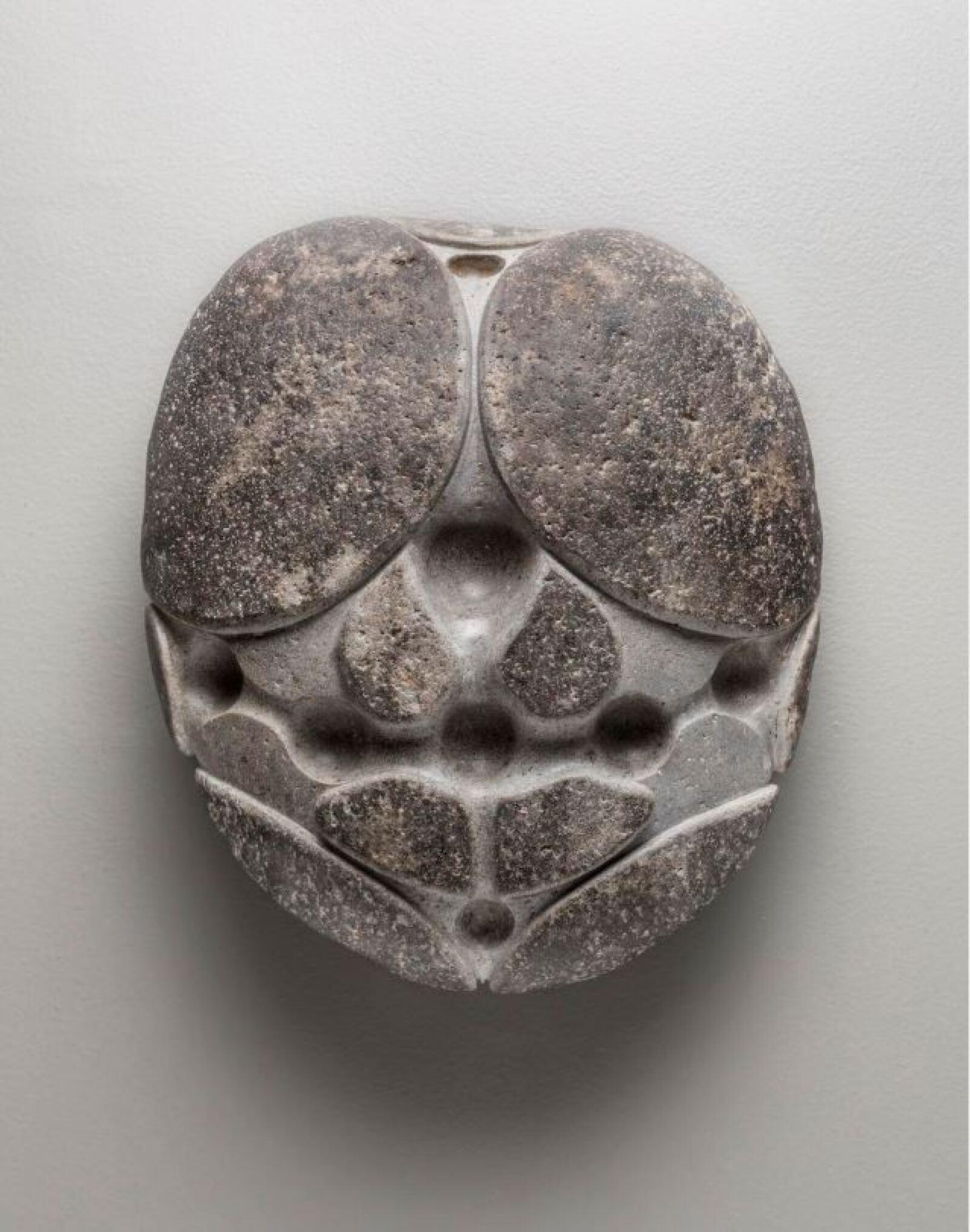Roca tortuga
