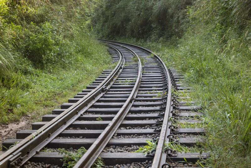 Vía de ferrocarril en la selva