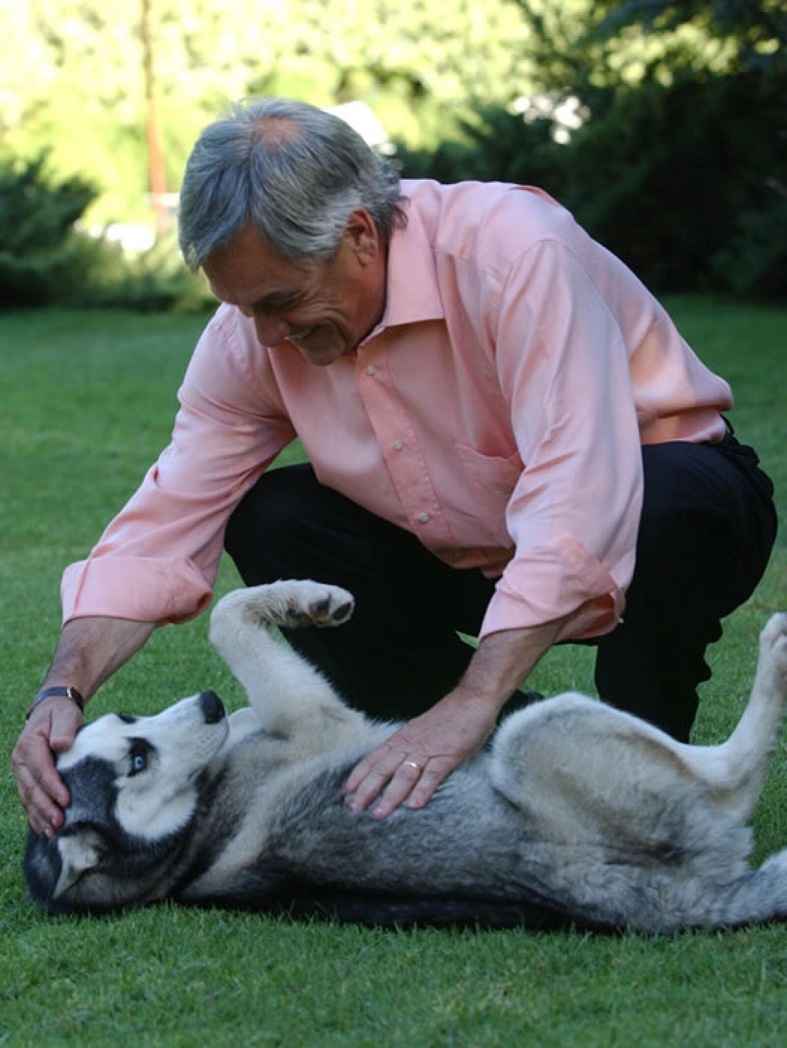 El presidente de Chile, Sebastián Piñera, disfruta de convivir con su Husky Siberiano.