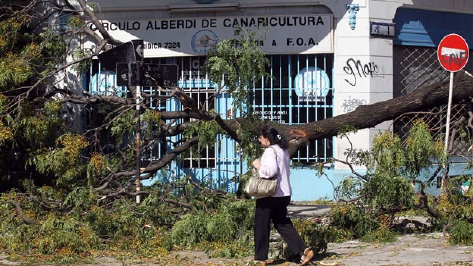 temporal Argentina