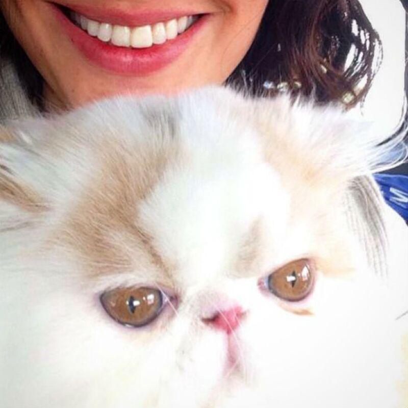 Esta tarde fue cuando la actriz compartió la lamentable noticia de la muerte de su mascota Berta, después de que le fuera reportado por la empresa veterinaria que estaba a su cuidado.