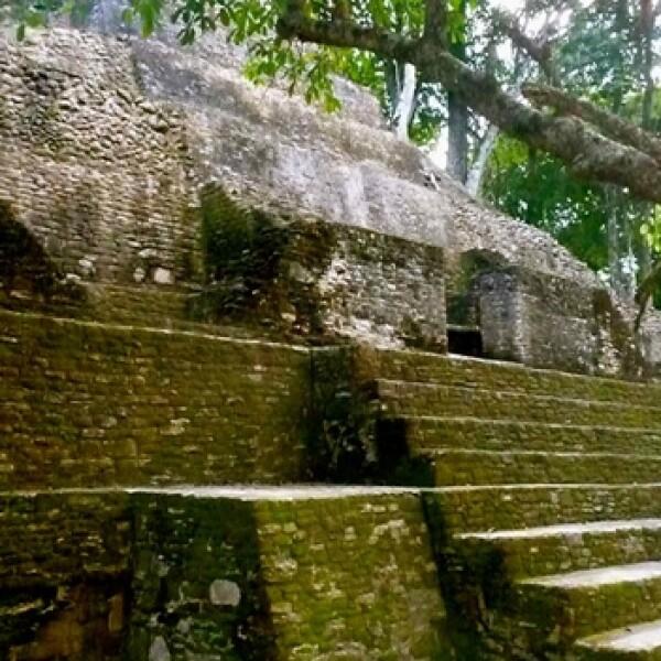 mayas cahal bech