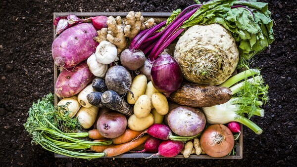 Healthy food: organic roots, legumes and tubers still life.