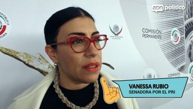 Vanessa Rubio Senadora