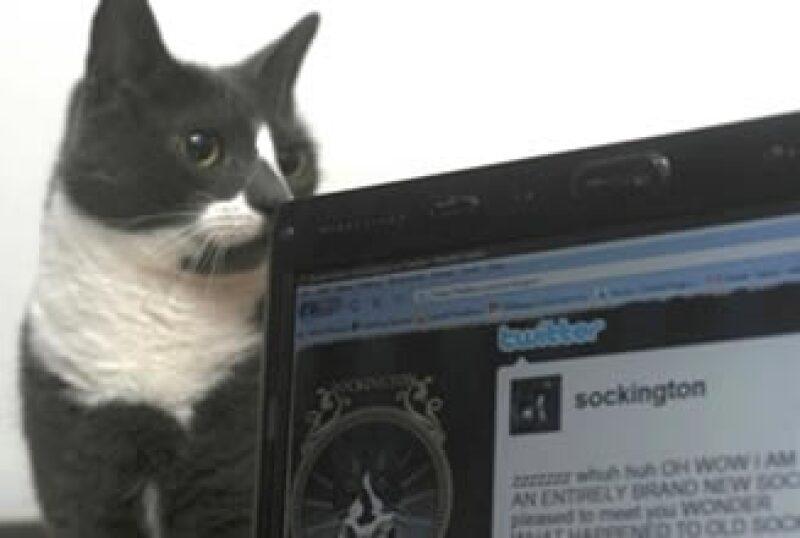 Twitter, la red social de mensajes cortos, ha crecido más de un 1,841% desde que nació. (Foto: AP)