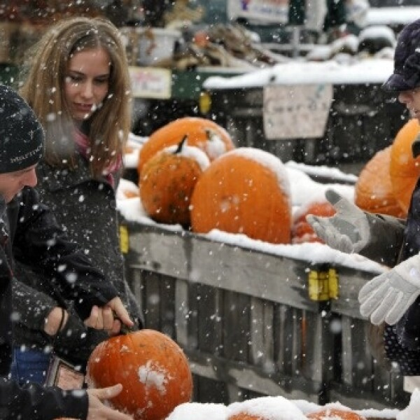 compras de calabazas en medio de tormenta de nieve