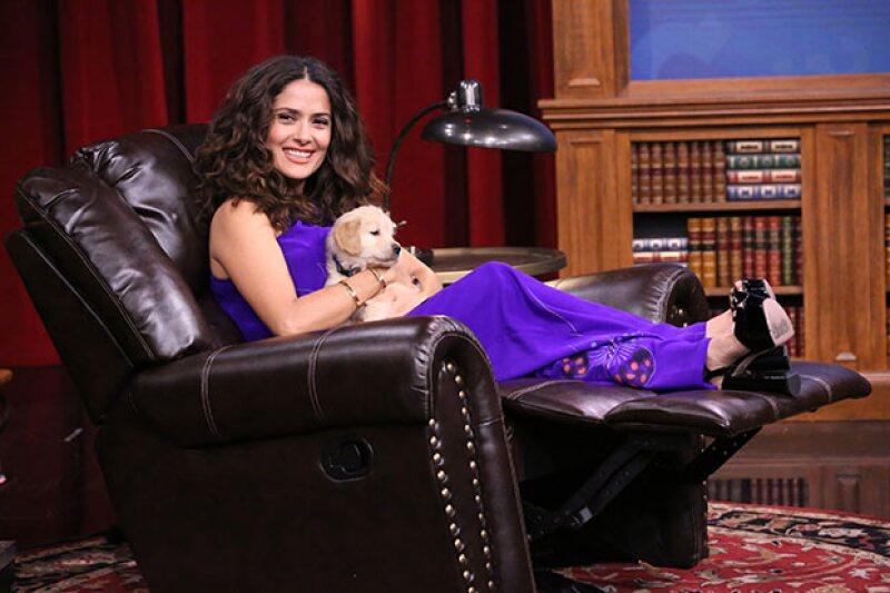 Salma resultó vencedora en Pup Quiz y fue agasajada con muchos cachorritos.
