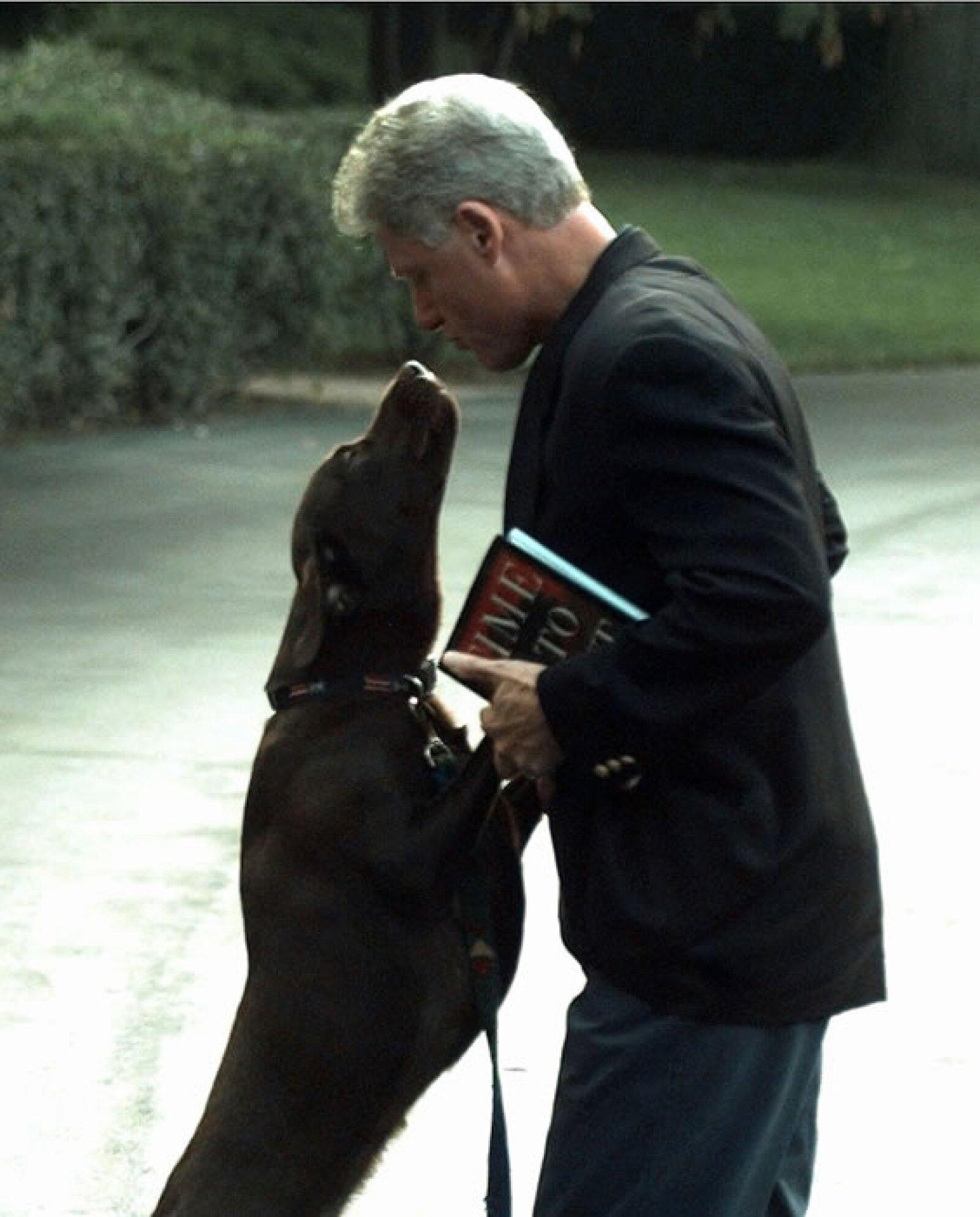 El expresidente de Estados Unidos adoraba a su perro, pero la historia no tuvo un final feliz. En 2002, Buddy fue atropellado frente a la casa de los Clinton en Westchester County, Nueva York.