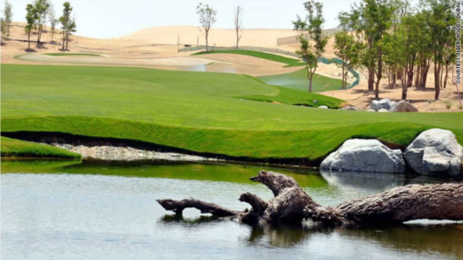 tiger woods dubai lago campo golf