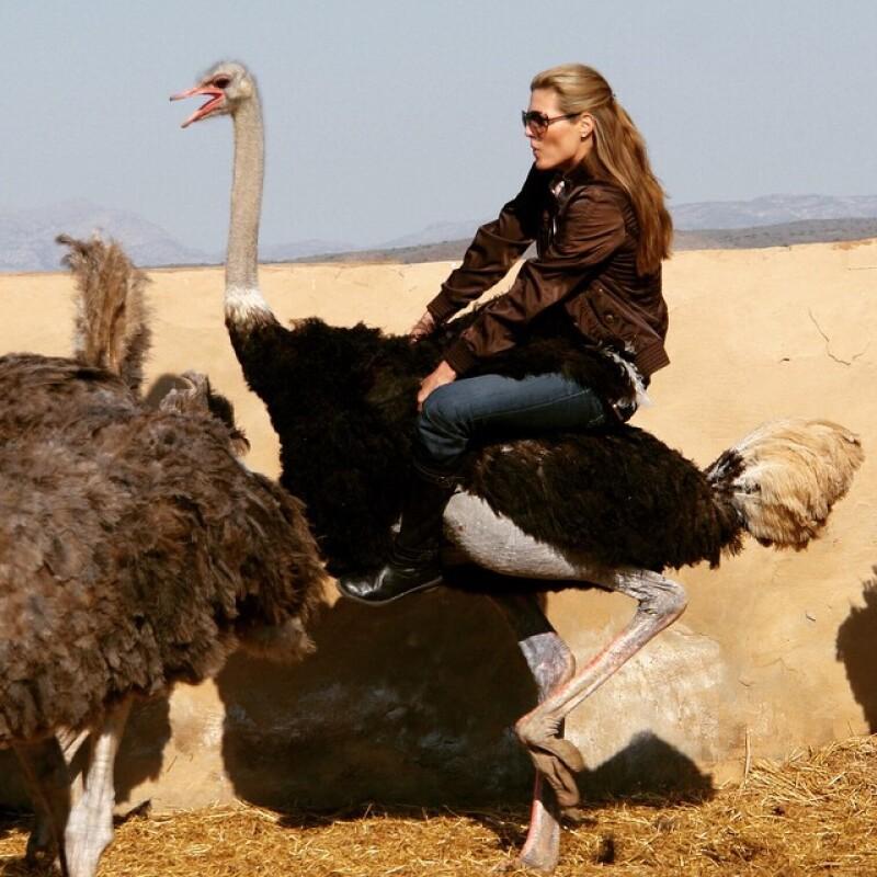 La conductora es conocida por viajar y ser intrépida, tanto, que ahora cambia los caballos por aves.