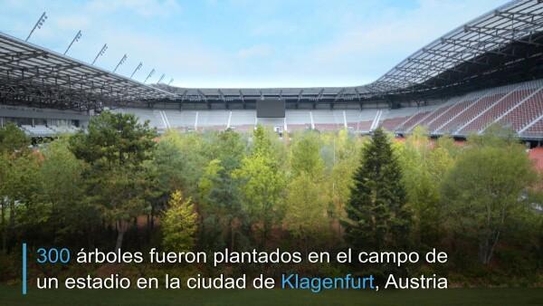 Artista austriaco instala un bosque en un estadio de fútbol