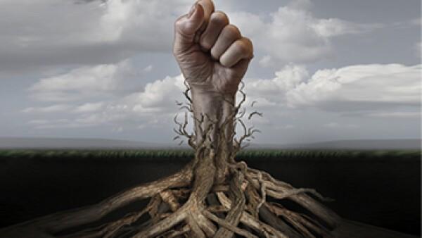 El académico de Harvard utiliza la industria del algodón y su historia para entender la economía actual. (Foto: iStock by Getty Images)