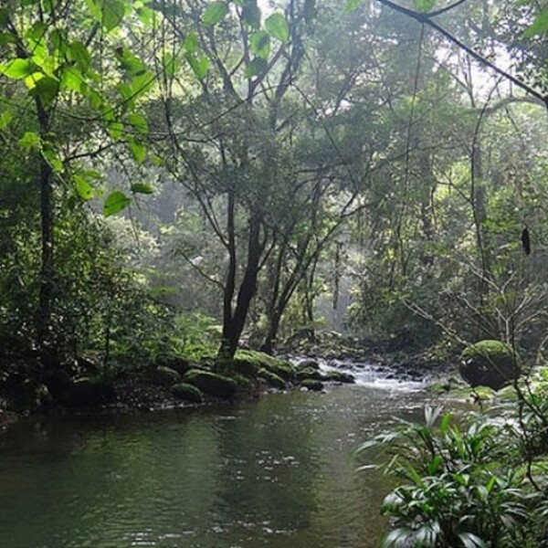 Senda Trans-Panamá (Panamá)