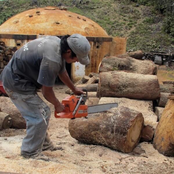 Oaxaca artesanas seda 19