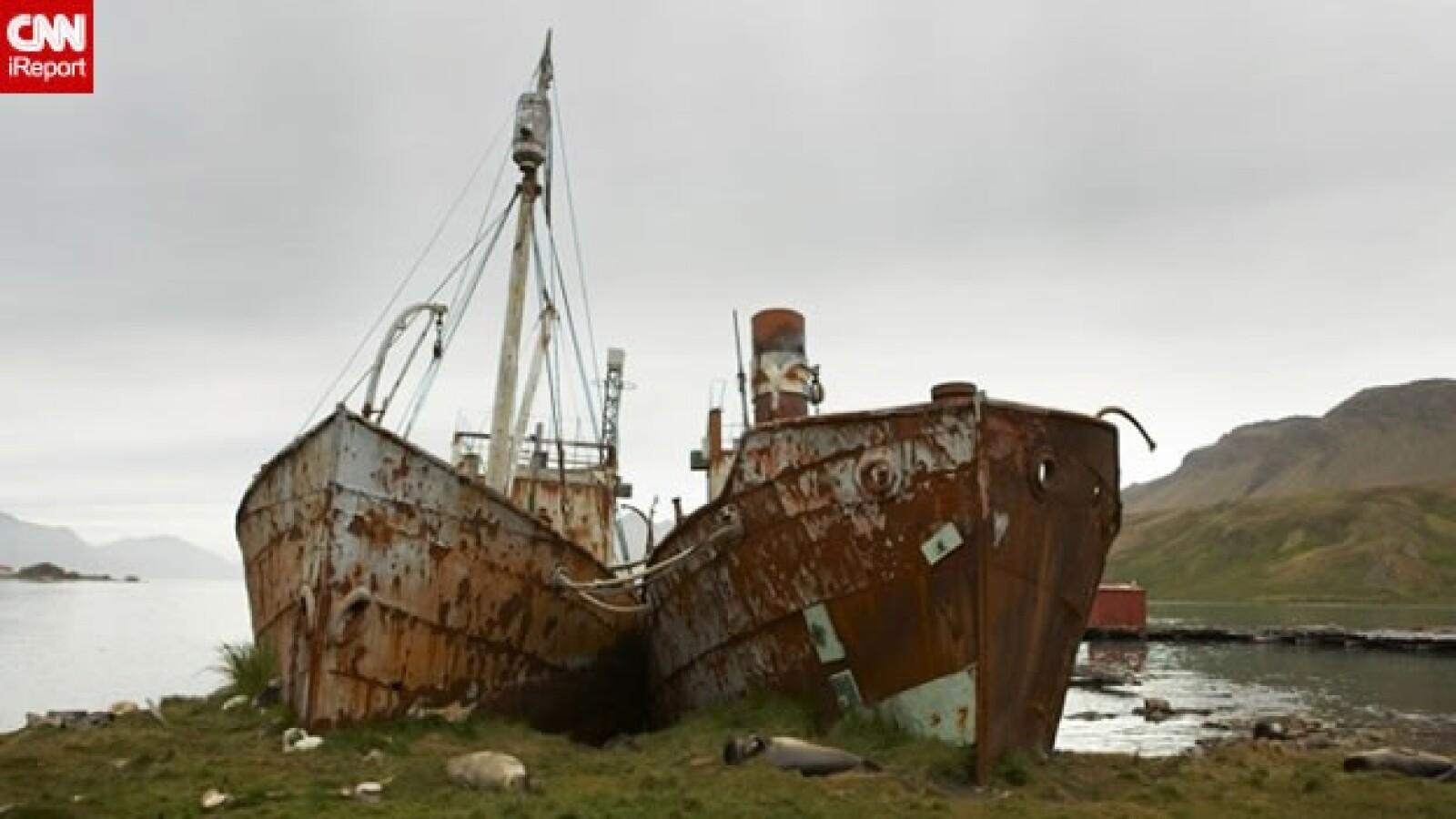 irpt-isla-georgia7