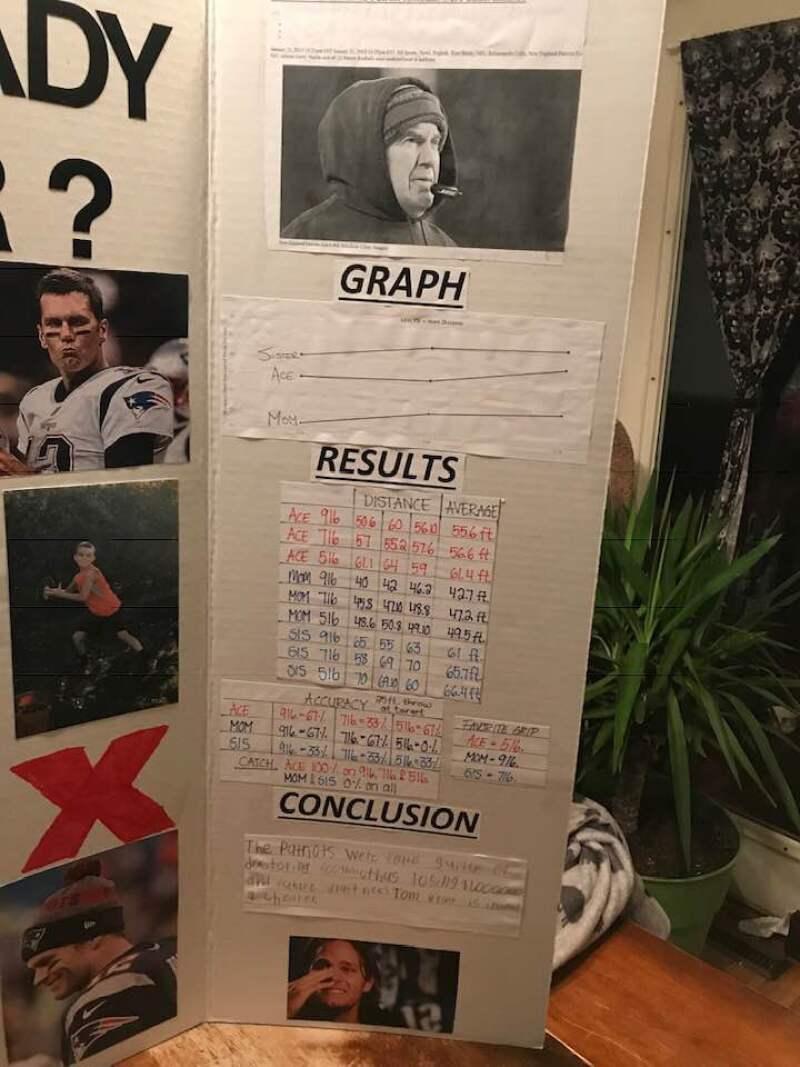 Brady trampa 03.jpg