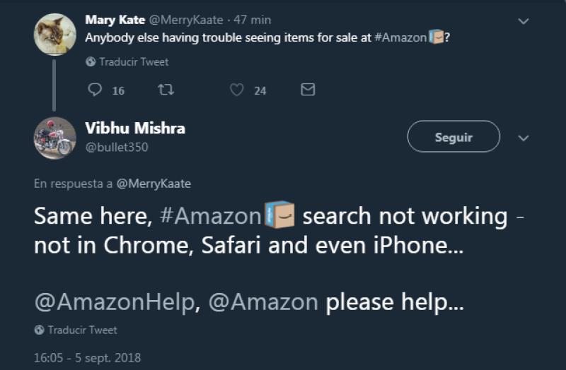 Usuarios reportan una aparente caída del buscador