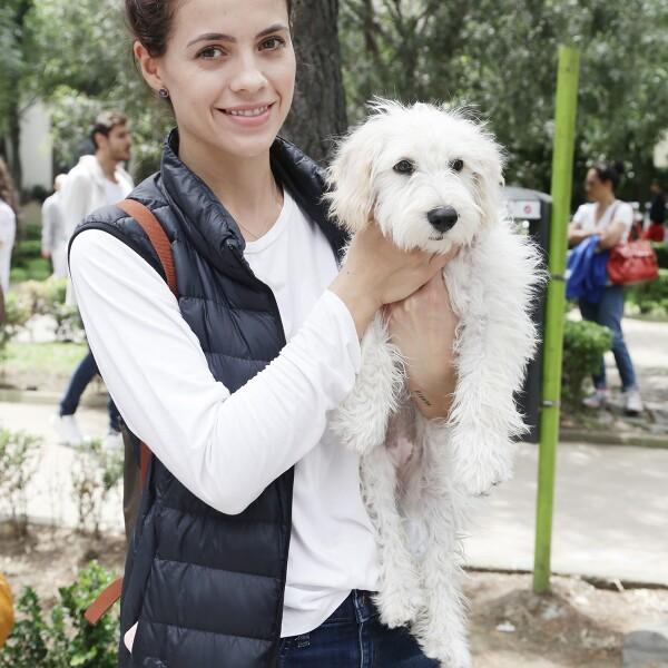 Evento perros polanco