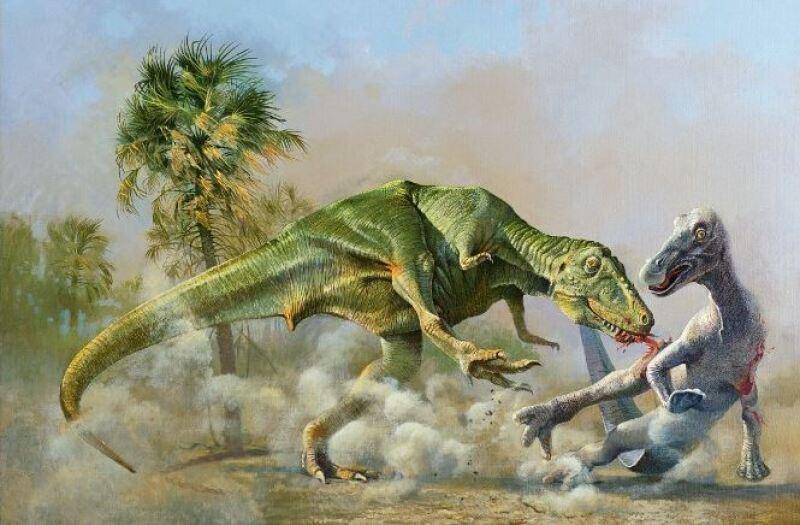 Tyrannosaurus y edmontosaurus