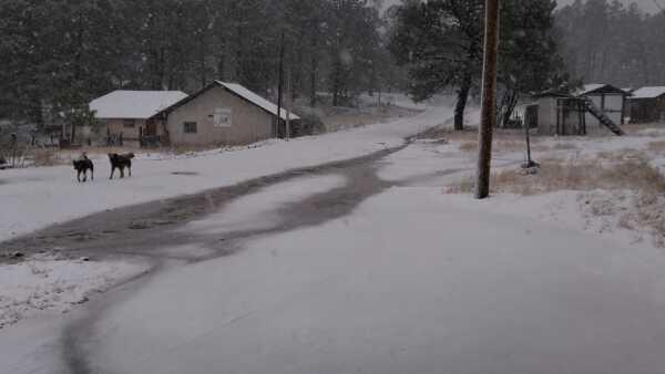 Durango nieve