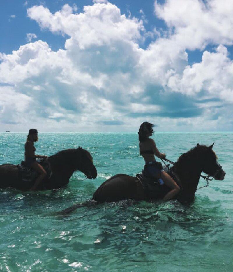 Pasearon en el mar con caballos.