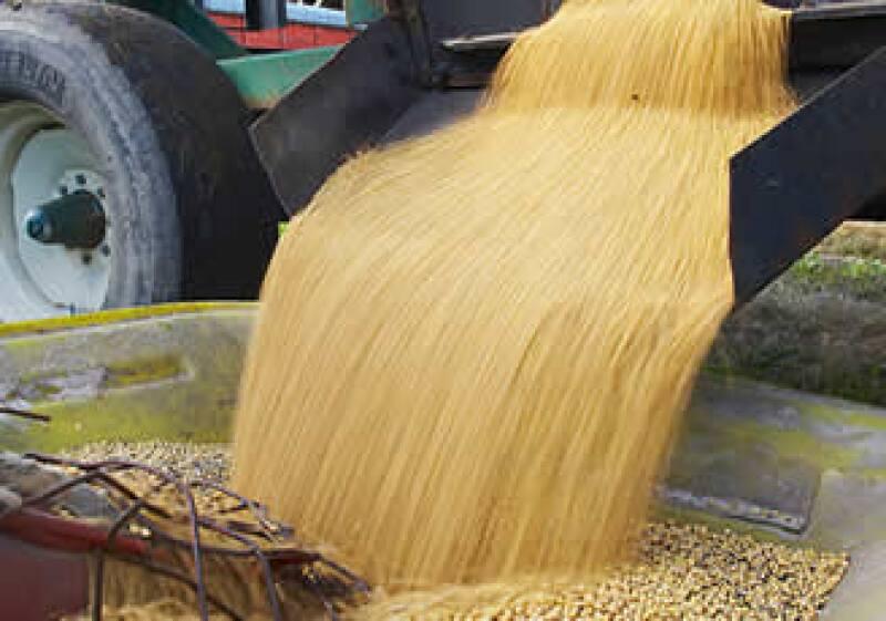 El Grupo Maseca es el productor más grande de harina de maíz y tortillas en el mundo. (Foto: Jupiter Images)