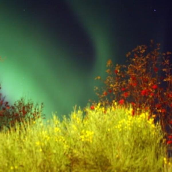 irpt-aurora8