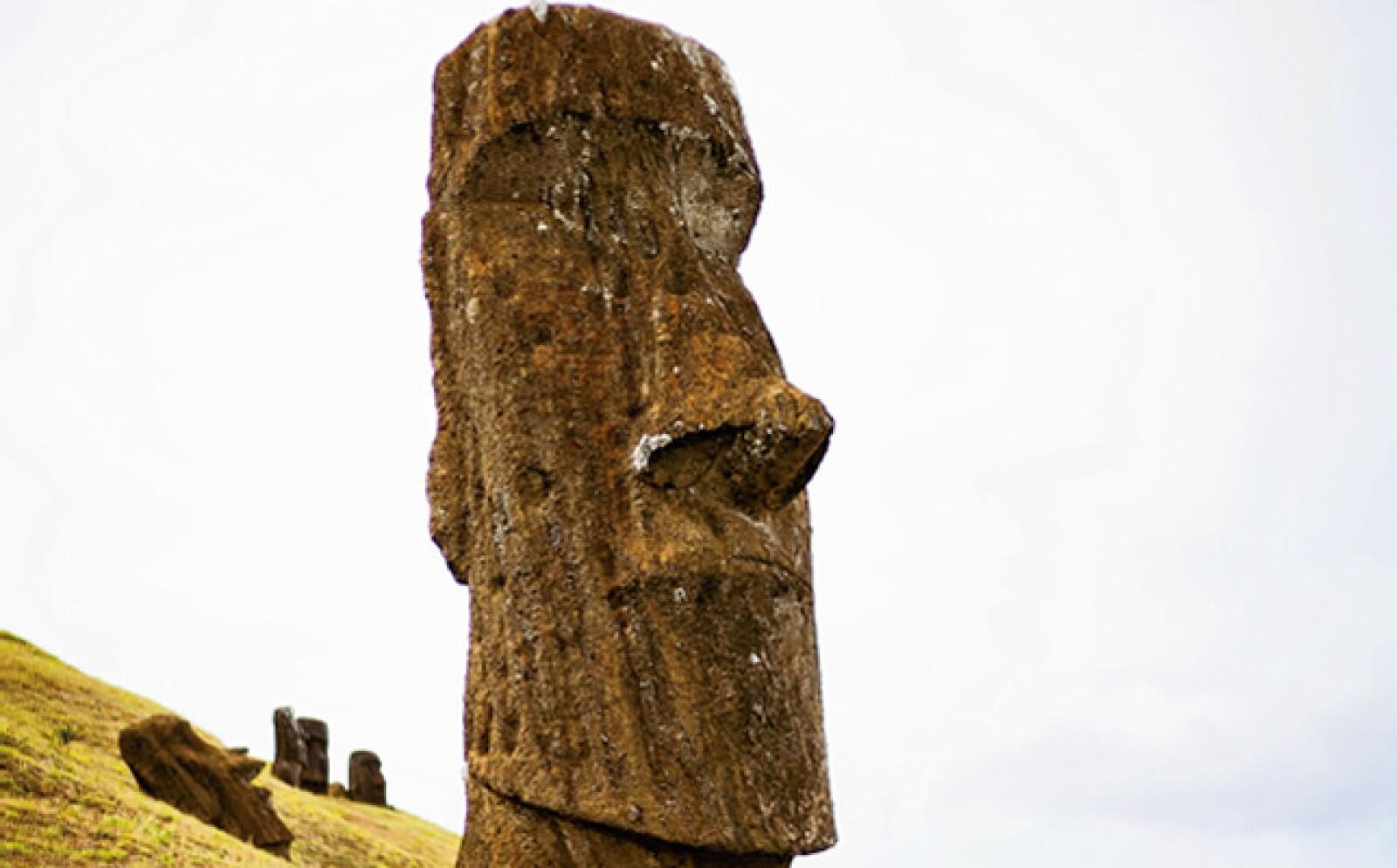 Los Rapa Nui, etnia del lugar, le llaman el museo al aire libre más grande del mundo. Ya que a lo largo de sus playas proliferan alrededor de 900 esculturas ancestrales de dos a 21 metros y 170 toneladas conocidas como moáis.