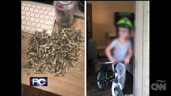 Este niño de dos años destruyó 1,600 dólares en billetes