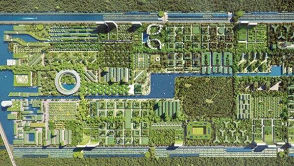 Smart Forest Cancún