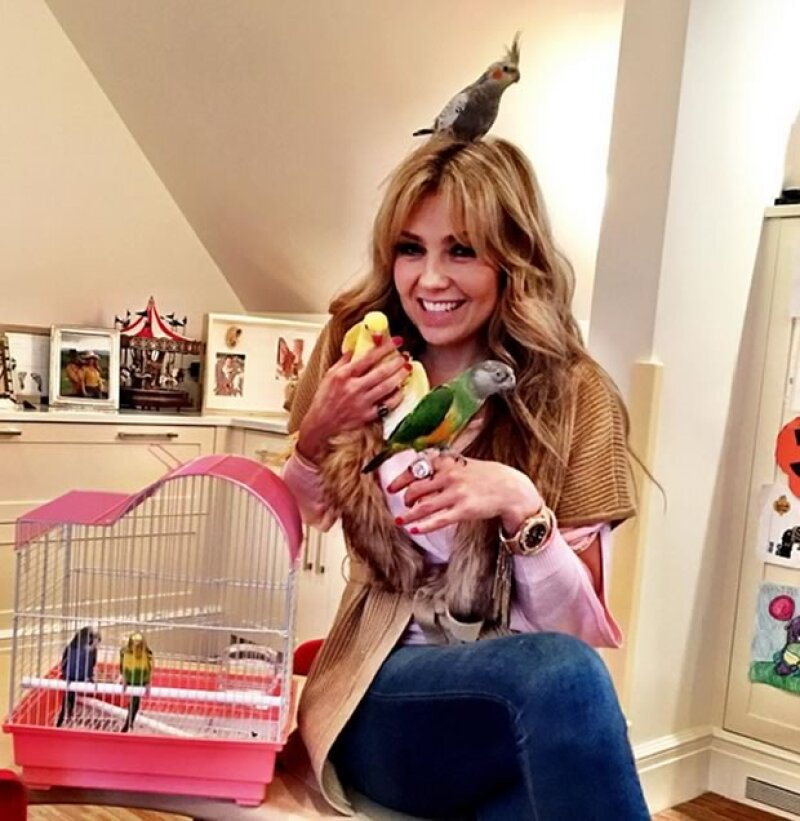 Empezando por Thalía, pasando por Karl Lagerfeld y terminando con Kylie Jenner: estas son las celebs que nos han dejado claro lo mucho que quieren a sus mascotas.