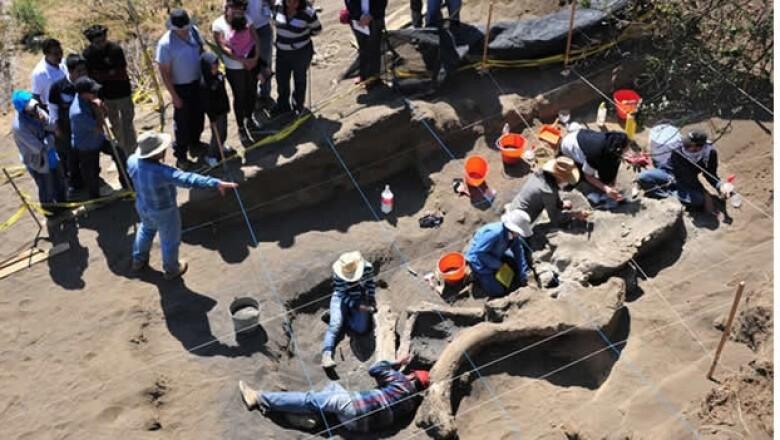 excavacion de mamut de milpa alta