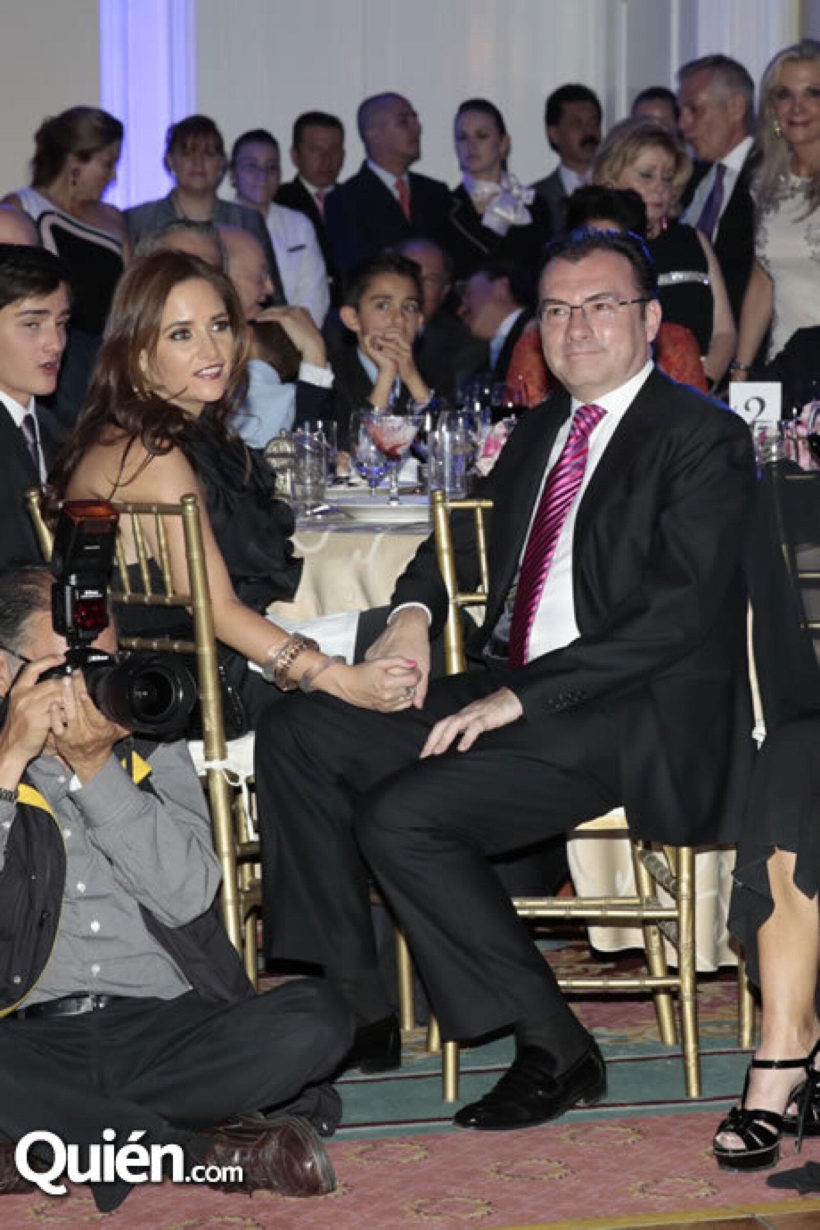 Virginia Gómez del Campo,Luis Videgaray (Secretario de Hacienda y Crédito Público)