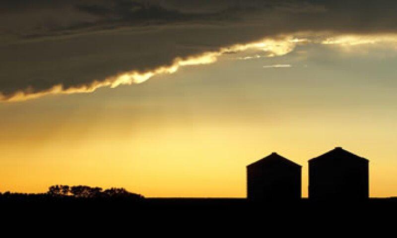 El Departamento de Agricultura ha reducido en dos ocasiones su pronóstico sobre la producción de maíz y soja. (Foto: AP)