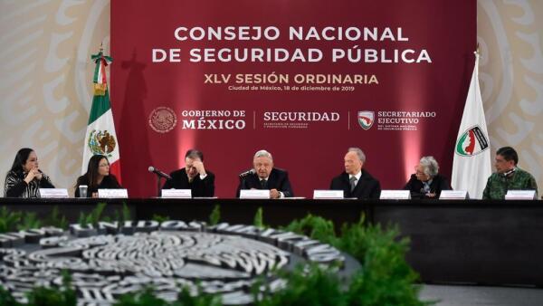 Consejo Nacional de Seguridad Pública.jpeg