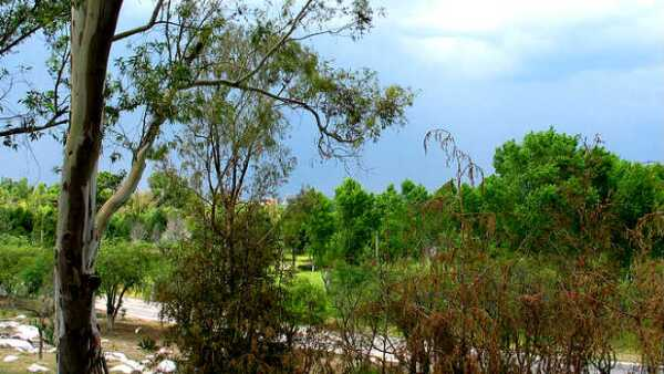 Parque San Luis Potos�