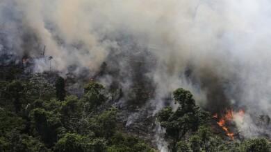 Incendio Amazonas-1