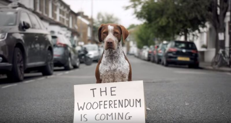 'The Wooferendum is coming'