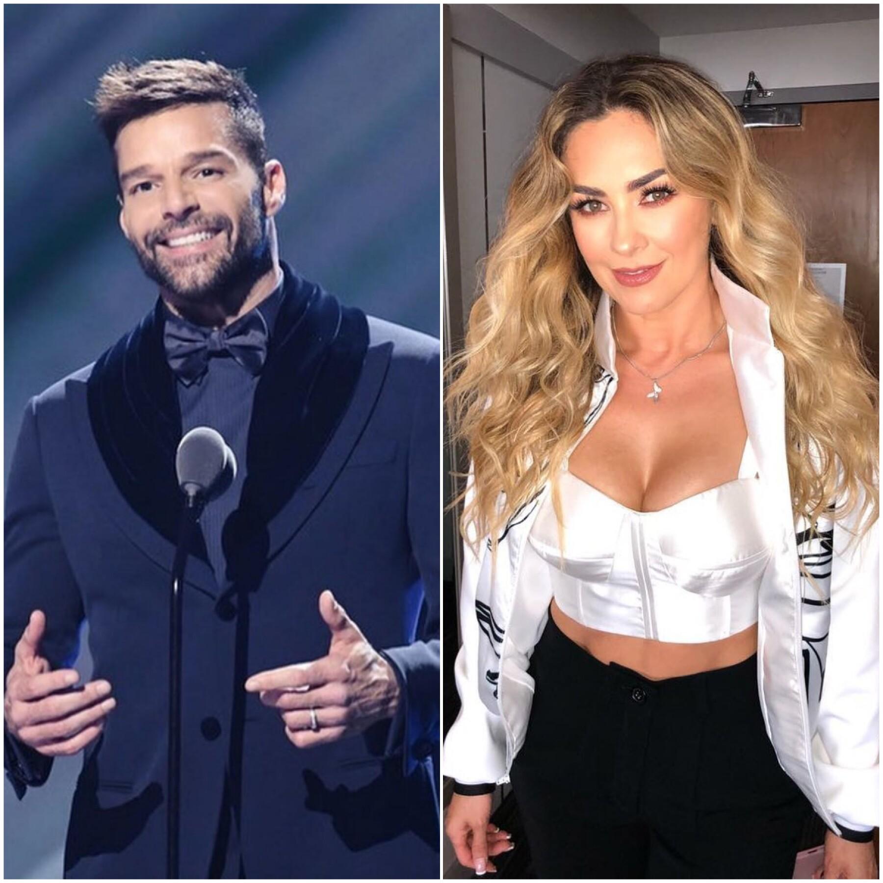 Ricky Martin y Aracely Arámbula