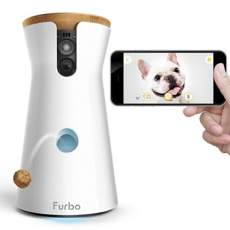Una cámara para perros
