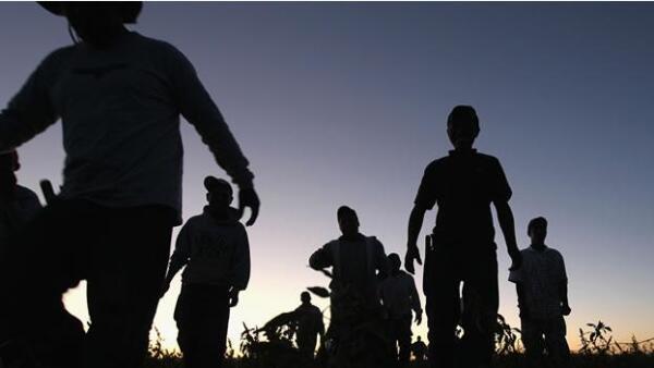migrantes trabajando