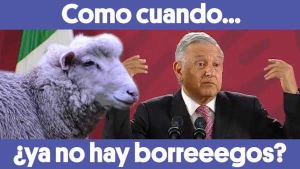 #ComoCuando 🙈 #AMLO dice que ya no hay borreeegos 🐑