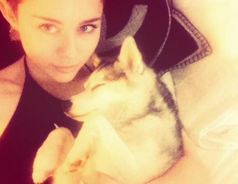 Miley solía compartir fotos de su perro Floyd en Twitter e Instagram.