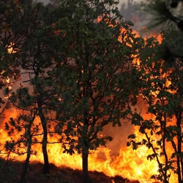 incendio La primavera guadalajara 1 2