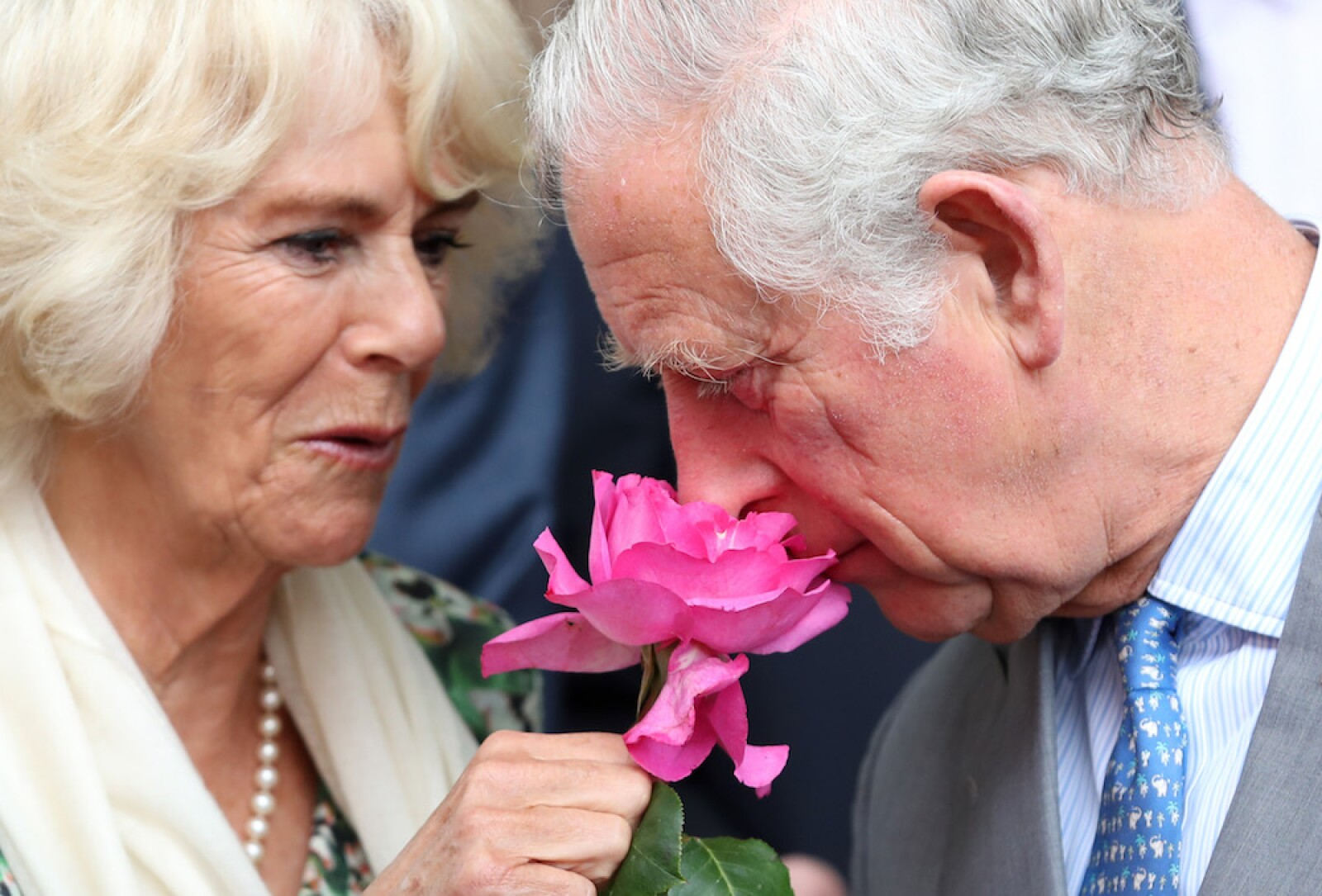 Prince Of Wales And Duchess Of Cornwall Visit France