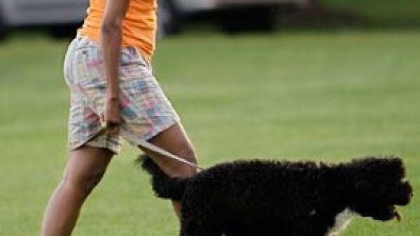 La primera dama estadounidense se dejó ver paseando a su perro, Bo, por los jardines de la Casa Blanca sin la elegancia que la caracteriza; llevaba bermudas, camiseta y sin una gota de maquillaje